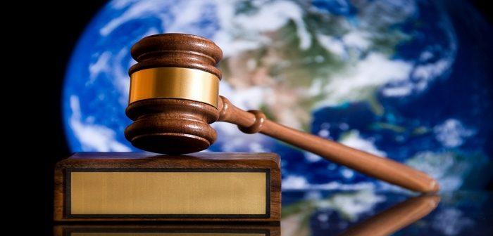 Quy định chi tiết, hướng dẫn thi hành một số điều của Luật Sở hữu trí tuệ và Luật sửa đổi, bổ sung một số điều của Luật Sở hữu trí tuệ về quyền đối với giống cây trồng