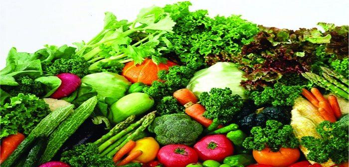 Tư vấn xin giấy phép vệ sinh an toàn thực phẩm tại oceanlaw