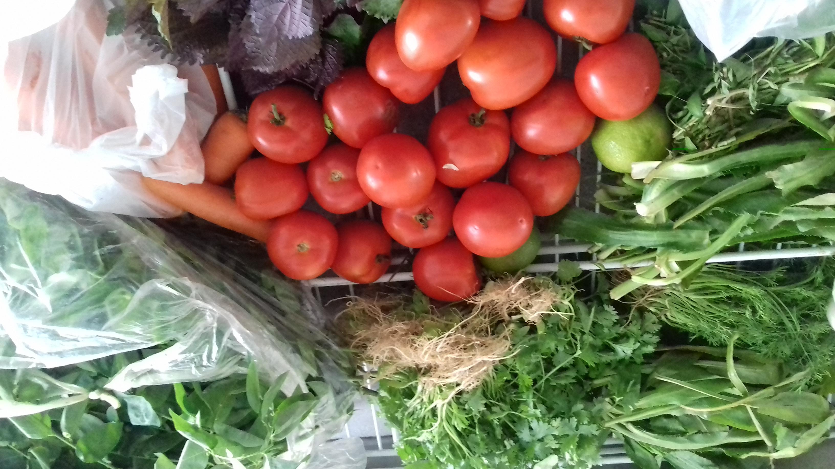 Quy định của pháp luật về vệ sinh an toàn thực phẩm